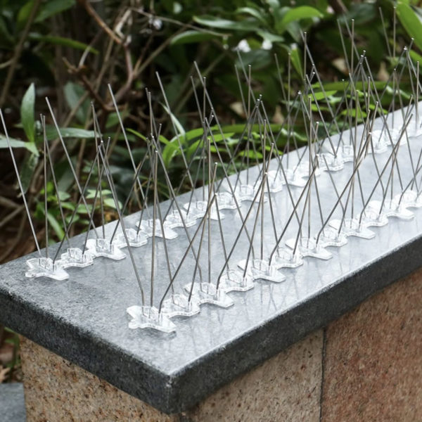 Gutter Spikes - Stainless Steel (per 50cm strip) 2