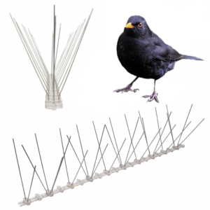 spikes to stop blackbirds