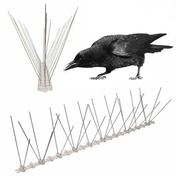 spikes to stop crows