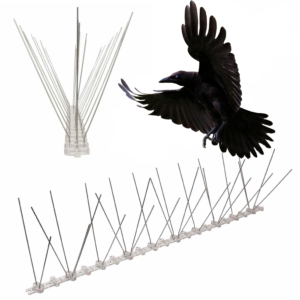 spikes to stop ravens